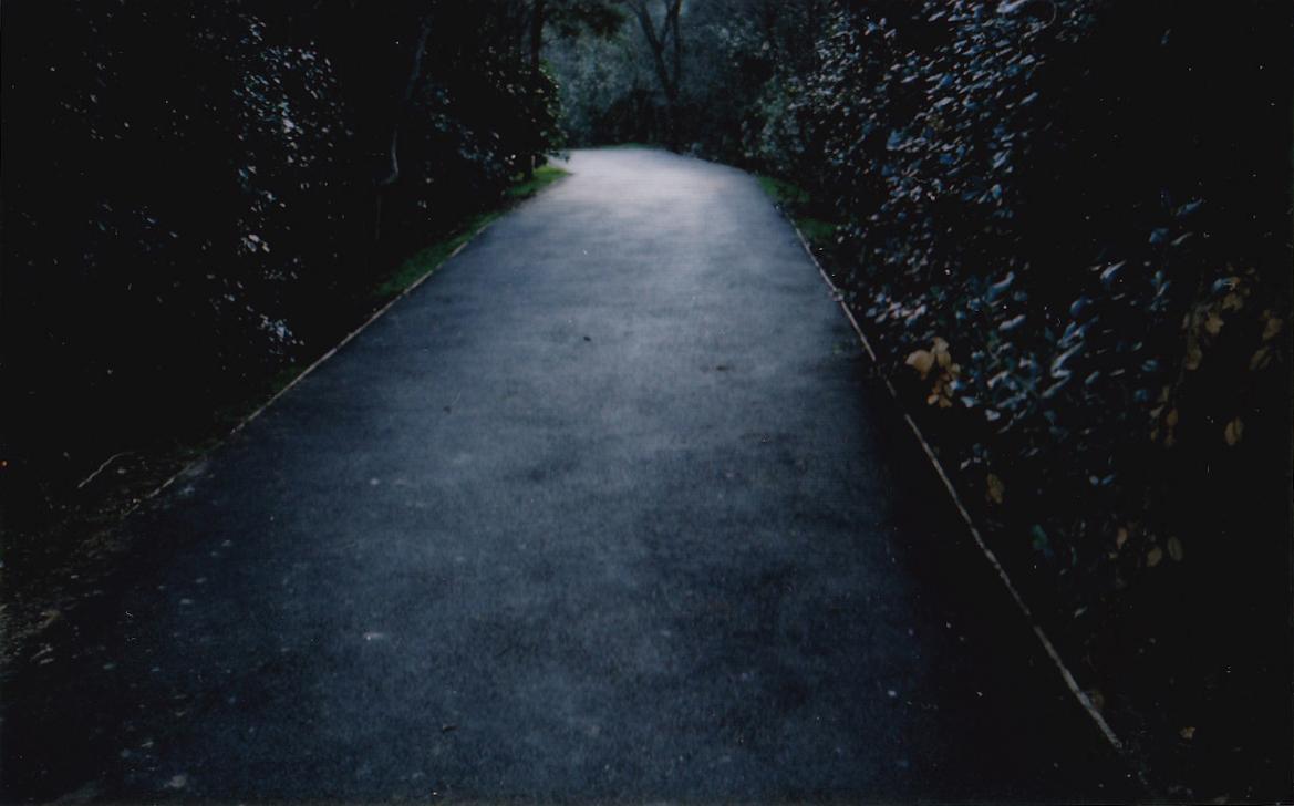 """J. Benci-2012 """"Il mistero del parco"""" (""""The mystery of the park"""")"""