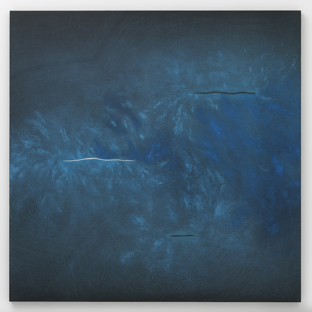 Right of Spring, 2012 Pencil, pigment and black aquacryl on canvas and aluminum Courtesy the artist and Lisson Gallery