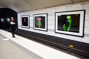 HELENE SCHMITZ Vues de l'installation des photos de HELENE SCHMITZ dans la station de métro Mariatorget, Stockholm, Suède - déc. 2012