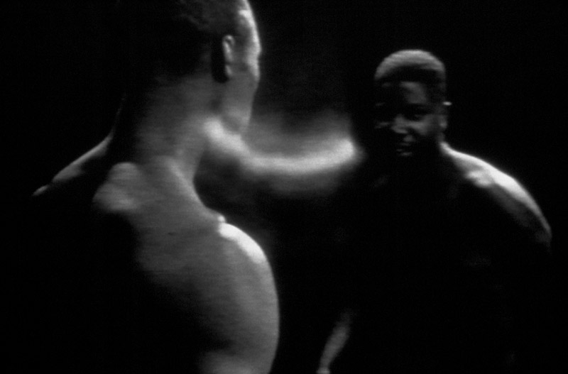 Steve McQueen, Bear, 1993, video still, Courtesy the Artist / Marian Goodman Gallery, New York / Paris and Thomas Dane Gallery, London © Steve McQueen