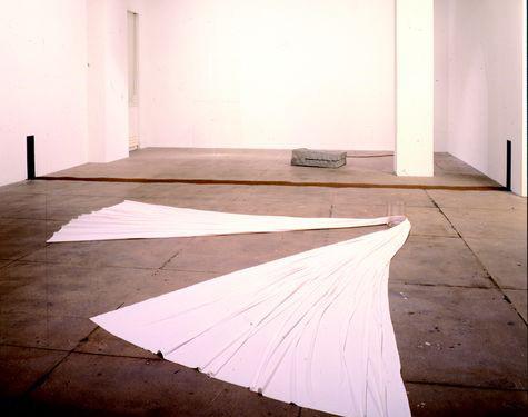 Giovanni Anselmo Direzione, 1967-68 Tela, ago magnetico, vetro Foto: Michael Goodman – Courtesy Marian Goodman Gallery, New York Courtesy Archivio Anselmo e Tucci Russo Studio per l'Arte Contemporanea