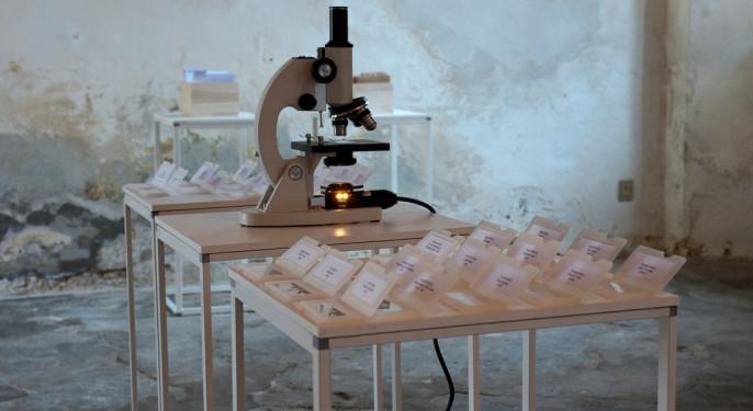 Cabinet de regard Aiuola d'attesa - Castello di Jerago 2010_foto Miriam Broggini