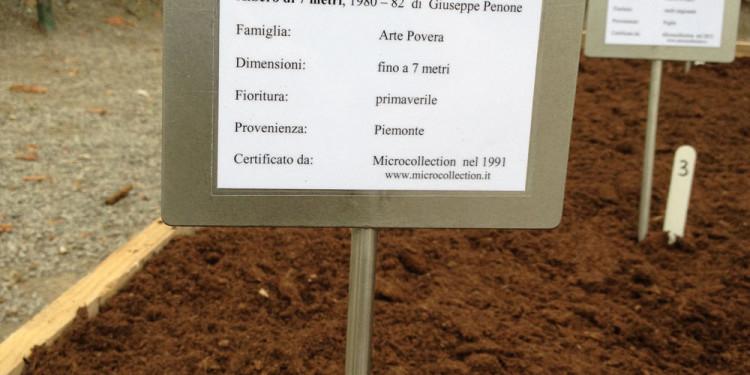 Vivaio d'arte_2014_ZOOart_Cuneo_in collaborazione con_Hubert Renard_dettaglio