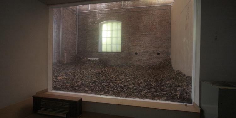 GIORGIO ANDREOTTA CALO', November. Dead leaves, still life, still alive Giorgio Andreotta Calò 2009, installazione site-specific Open Studios, Rijksakademie van Beeldende Kusten, Amsterdam, Olanda