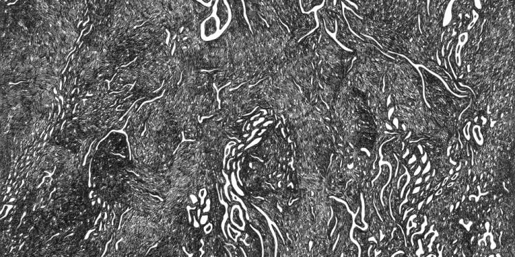 7 Pelagosette, 1995 Matita e inchiostro nero su carta, 35 x 35 Cm