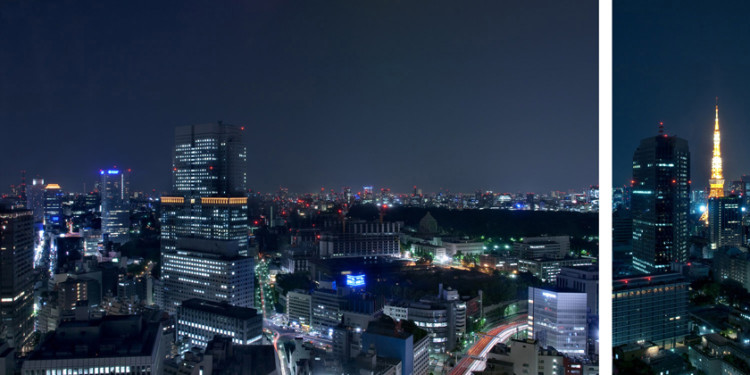 Spellata dalla luce del giorno, si vede tutta la tavola anatomica. Si vedono il sistema vascolare con le grandi arterie, i centri nervosi, le fasce muscolari. È possibile addirittura vedere le singole cellule: gli appartamenti, le residenze, gli uffici, i luoghi di incontro. Un organismo, insomma. È Tokyo.