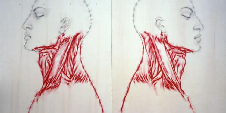 Nuove anatomie, 2002 - matita e pigmento su tavola cm 251x370 dittico_1