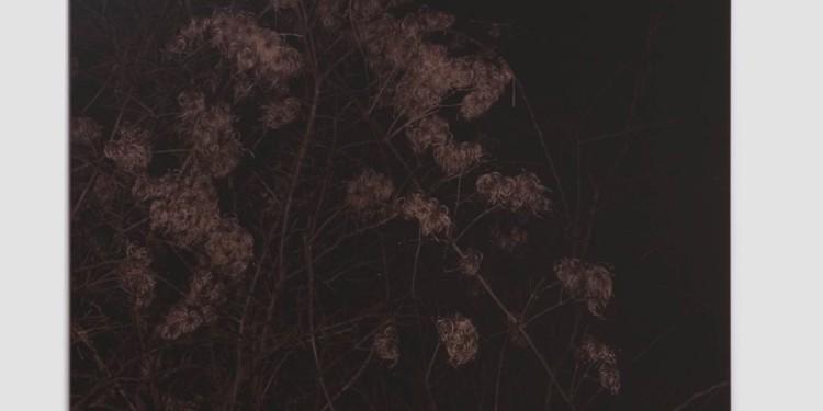 Giovanni Ozzola Settecento - notturno n.5 2011 tecnica mista | mixed media 202 x 135 cm Courtesy Galleria Continua, San Gimignano / Beijing / Le Moulin Photo: Ela Bialkowska