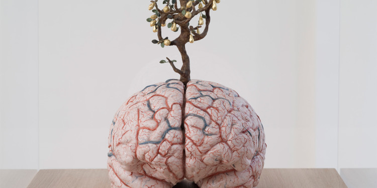 Jan Fabre, Braintree with golden fruits, 2011, silicone, peinture, argile, or et matière synthétique, 32 x 25 x 35 cm Courtesy Galerie Daniel Templon, Paris , Photo : B.Huet/Tutti, ©Angelos