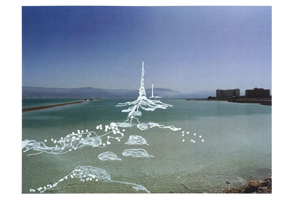 Sigalit Landau Study For The Salt Bridge Project 2011