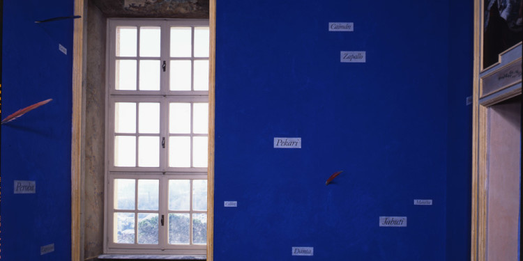 Lothar Baumgarten Yurupari - Stanza di Rheinsberg (Yurupari – Rheinsberg Room), 1984 pigmento blu cobalto, cartigli, piume, tempera su parete / cobalt pigment, strips of paper, bird feathers, tempera on wall 1252 x 380 cm Castello di Rivoli Museo d'Arte Contemporanea, Rivoli-Torino foto / photo Paolo Pellion