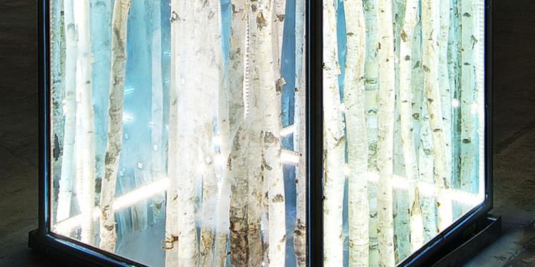 Birch cube, 2011 betulle, alluminio, vetro, luci al led, cm 100 x 100 x 100 - Courtesy dell'artista e Brand New Gallery, Milano