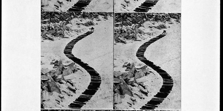 Gina Pane - Continuation d'un chemin de bois, 1970, 1970, 6 fotografie, viraggio seppia, 121 x 60 cm. Collezione La Gaia, Busca, Italia