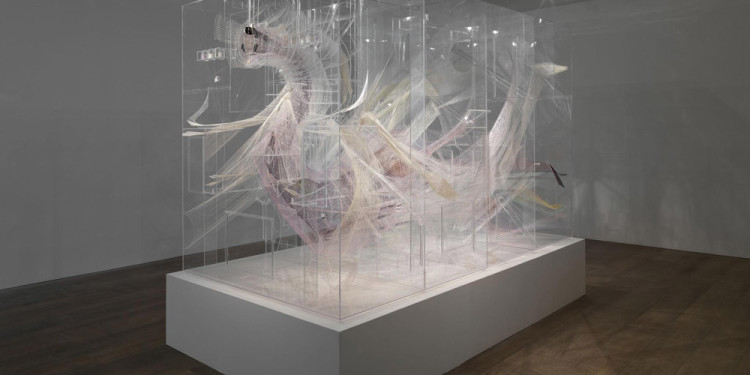 David Altmejd, Le ventre, 2012, Plexiglas, resin, thread, metal wire, acrylic paint, acrylic gel, epoxy clay, coconut shells, 244.5 x 168 x 291.5 cm, 96 1/4 x 66 1/8 x 114 3/4 ins