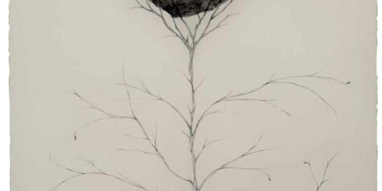 Oscar Turco - dell'equilibrio,,, 10x13