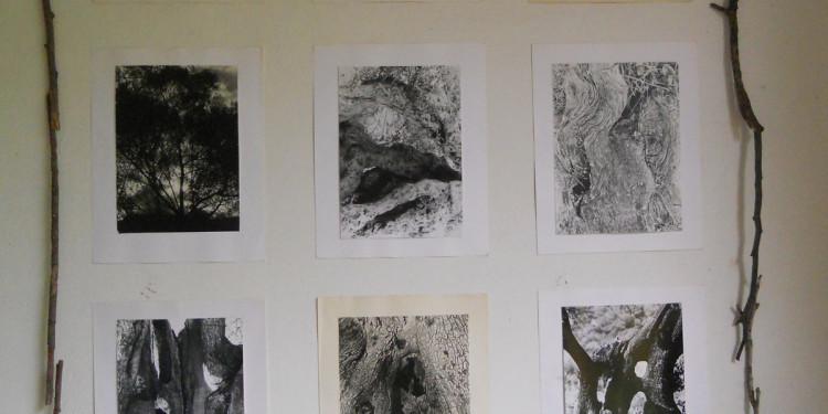 installazione n. 2 foto b/n Campagna Romana anni 60-70 di Giuseppe Ottai al Casale Ex Mulino 25-26 maggio 2013