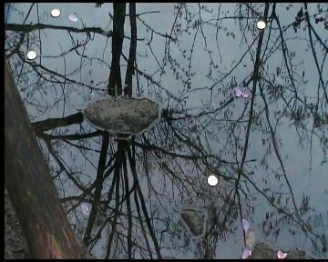 """Frame da video """"Il sacro Almone attende la rinascita"""" di Raffaella Losapio - Immagine del 27 marzo 2014, nel giorno della """"Lavatio Matris Deum"""" nel giorno della """"Lavatio Matris Deum"""" con Eleonora Del Brocco al Parco della Caffarella"""